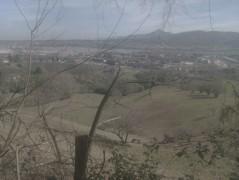 Txingudi